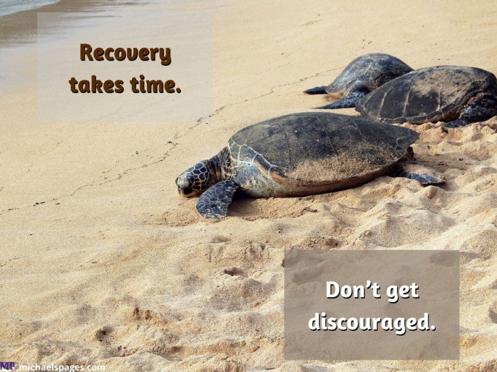 Turtles are heading towards the water and quote about recovery of OCD